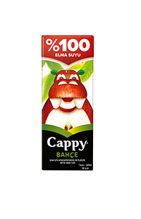 CAPPY ELMA SUYU 200 ML