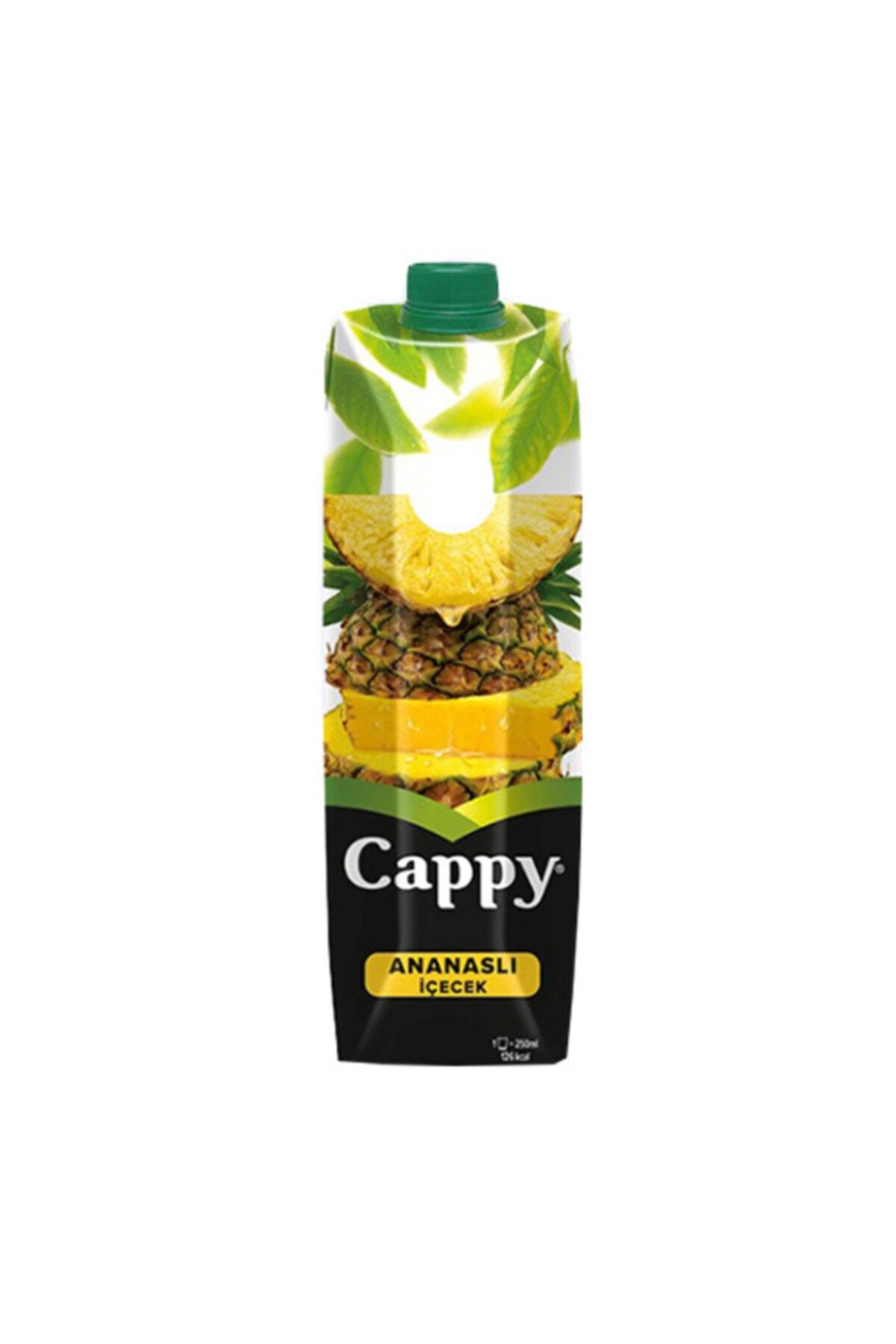 CAPPY ANANS TETRA 1 LT