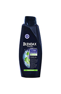 BLENDAX KEPEGE KARSI ETLKILI MEN 550 ML