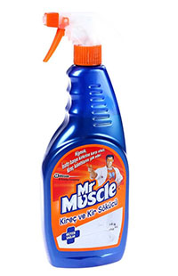 MR MUSCLE KIREC & KIR SOKUCU SPREY 750 ML