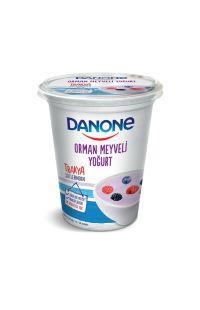 DANONE MEYVELI YOGURT ORMAN MEYVELI 500 GR