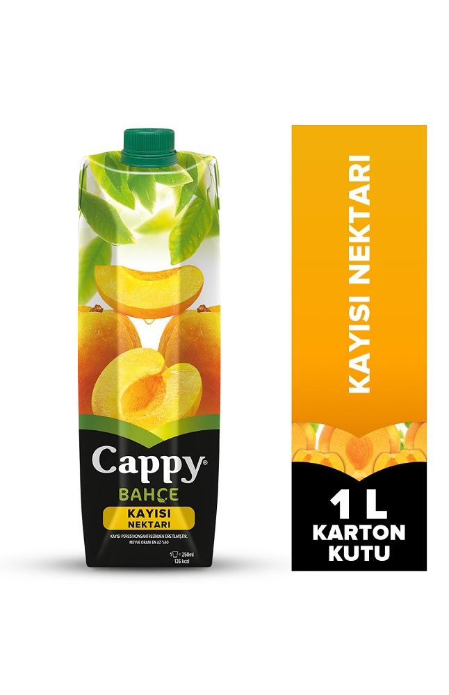 CAPPY KAYISI NEKTARI TETRA 1 LT