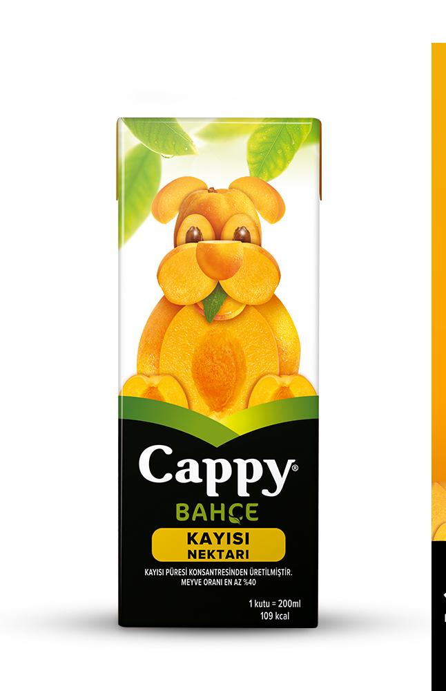 CAPPY MINI KAYISI 200 ML